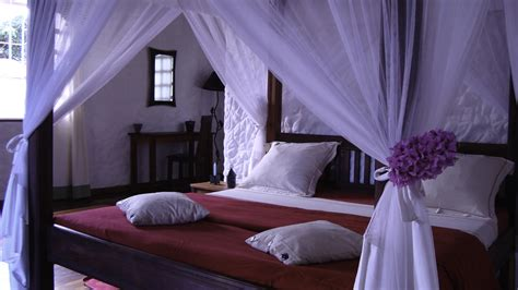 madagascar bedroom set awesome madagascar bedroom set images home design ideas ramsshopnfl com