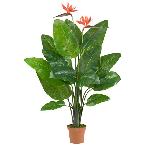silk plants bird of paradise plant real touch silk specialties
