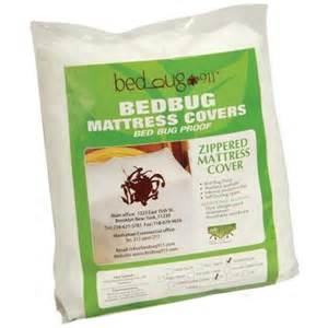 bed bug mattress cover home depot standard zippered allergen dust mites 12 in d king