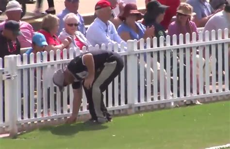 reverse swing bowling victoria hit with ball tering penalty cricket com au