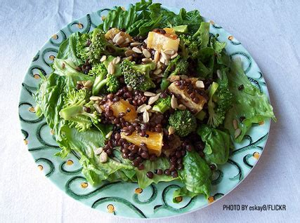 Garden Salad Ideas Salad Garden Ideas Image Search Results