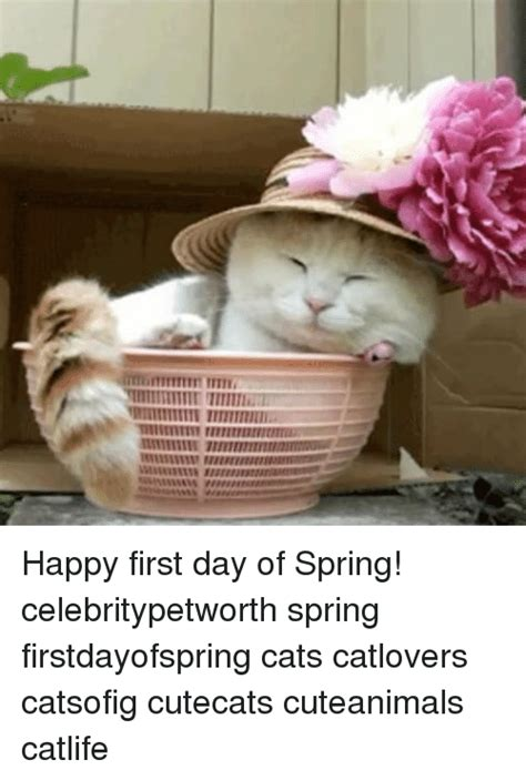 First Day Of Spring Meme - funny first day of spring memes of 2017 on me me