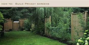 how to get privacy in your backyard sabrina s garden use trellis for screening