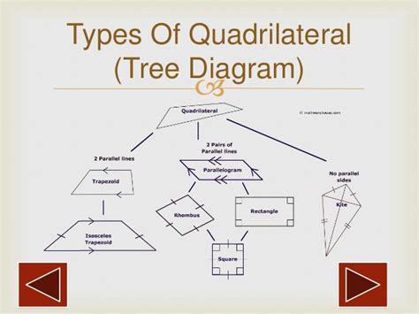diagram of quadrilaterals quadrilateral diagram tree