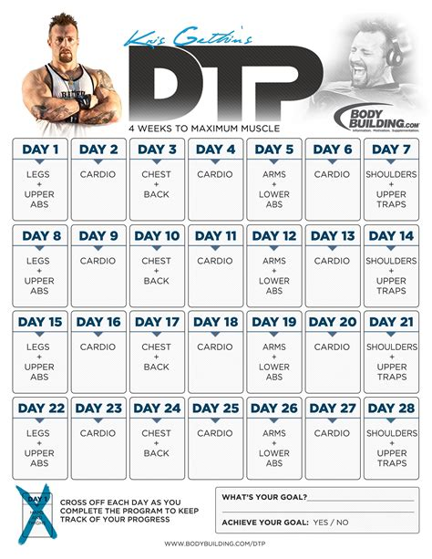 building workout routine pdf eoua