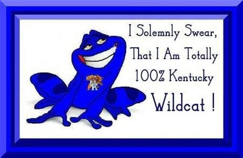 17 best images about kentucky 17 best images about kentucky wildcats on cats