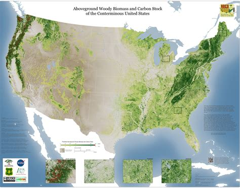 map us national forests forest carbon map released for the us