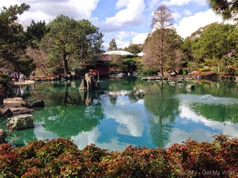 Auburn Botanic Garden Auburn Cherry Blossom Festival 2015 Sydney