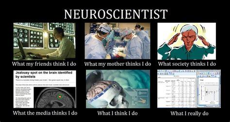 Neuroscience Meme - neuroscientist designer s playground
