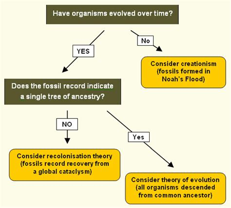 history flowchart a new approach to earth history which way to go
