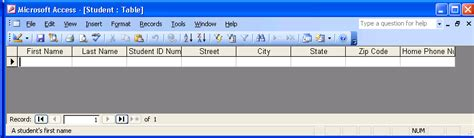 design view definition access definition of datasheet view in access