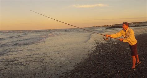 surf report cape cod surf fishing report for cape cod october 12