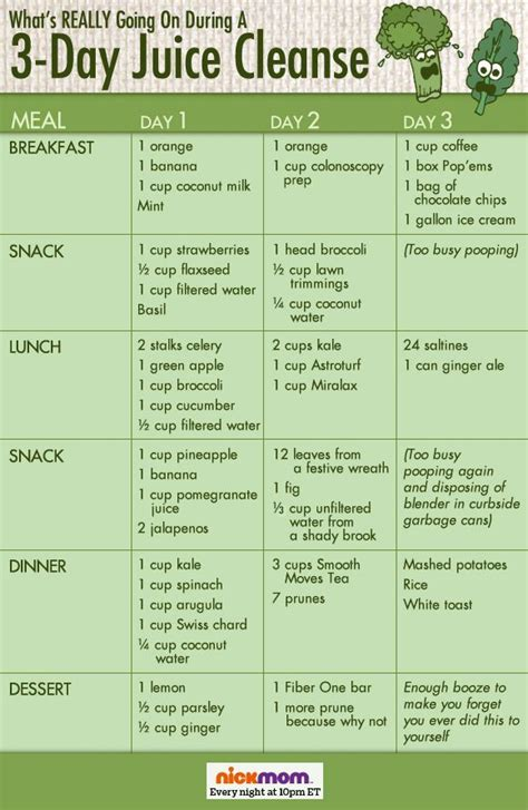 Gaiam 3 Day Clean Food Detox Plan by 3 Day Cleanse Detox Diet Djposts