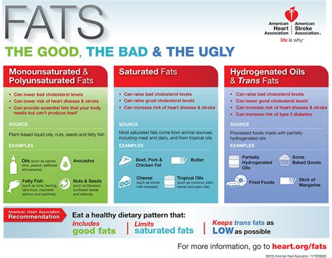 healthy fats infographic fats the the bad and the infographic