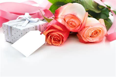 rosas para escribir banco de im 193 genes im 225 genes de flores y rosas para