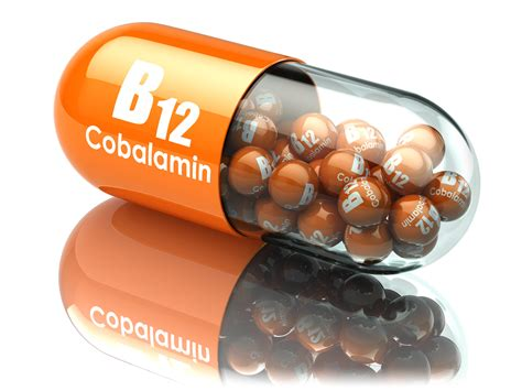 b12 for dogs vitamin b12 review necessary nootropic especially for ye olden folks vegetarians