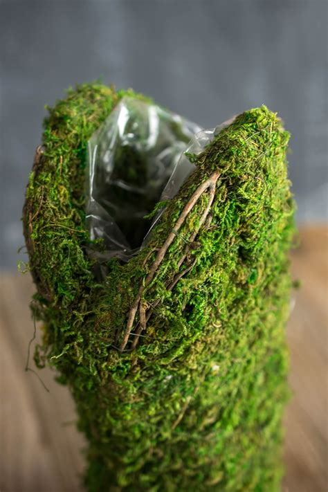 Planter Moss by Moss Covered Cowboy Boot Topiary Pot 13in