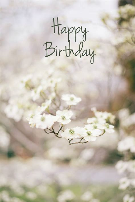 pretty birthday images pretty happy birthday quote pictures photos and images