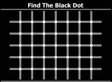 find the dots tag optical illusion squackle com the funniest site on the net