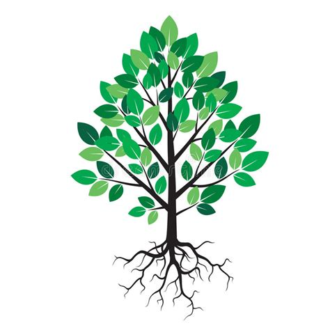 Baum Mit Roten Bl Ttern 136 by Malvorlage Baum Mit Bl 228 Ttern Die Beste Idee Zum Ausmalen