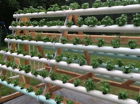 how to grow 168 plants in a 6 x 10 space with a diy a