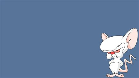 pinky wallpaper pinky and the brain full hd wallpaper and background image