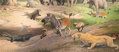 pliocene epoch fossil horses