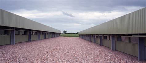 Commercial chicken housing plans   Home design and style
