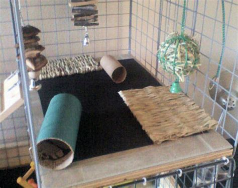 Mainan Animal Two Set wooden shelves covered in tiles with mats for grip pretty