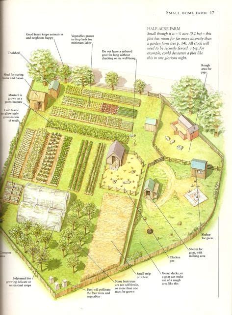 farm layout something to ponder homestead layout farm layout farms and layout home and farm 1 5 acres self sufficient living home search and acre
