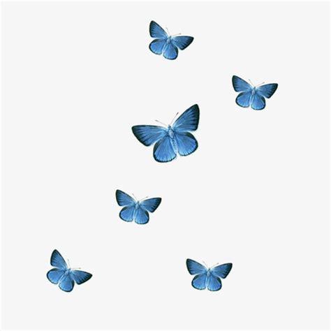clipart farfalle blue butterfly butterfly clipart blue butterfly png