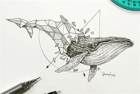 whale pattern drawing artist pairs wildlife with geometry to create stunning