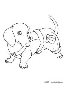 Dachshund Coloring Pages dachshund puppy coloring pages hellokids