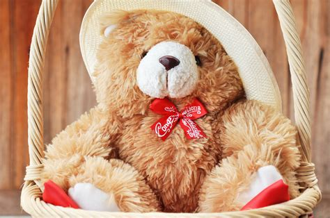 full hd video teddy bear full hd teddy bear wallpapers hd wallpapers images