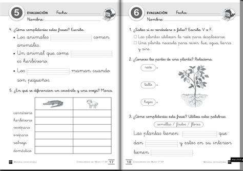 preguntas de español examen el blog de primero 2 evaluaci 211 n inicial continua y final