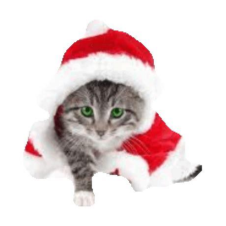 gif transparent animals christmas animated gif  gifer  balladobandis