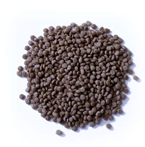 Pigeon Feed 18 Pigeon Feed Extruded Baden Feed Supply