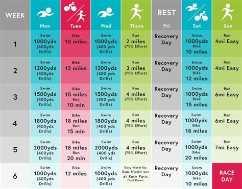 To Triathlon Plan by 119 Best Ideas About Race Obstacle On