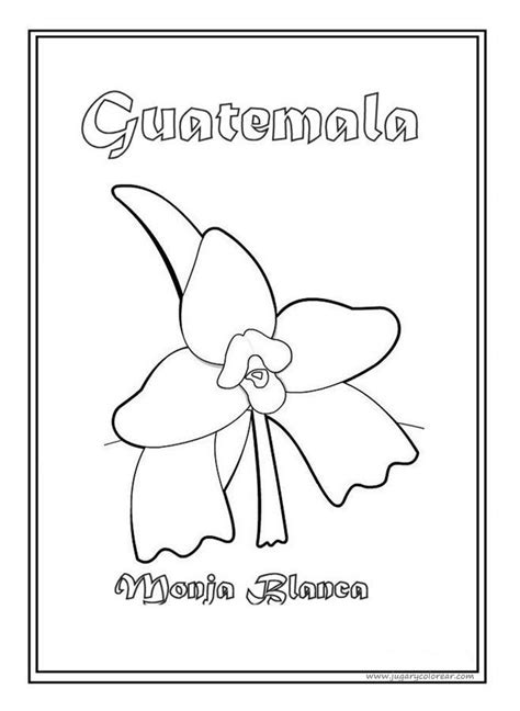 simbolos patrios colouring pages imagenes de los simbolos patrios para colorear imagui