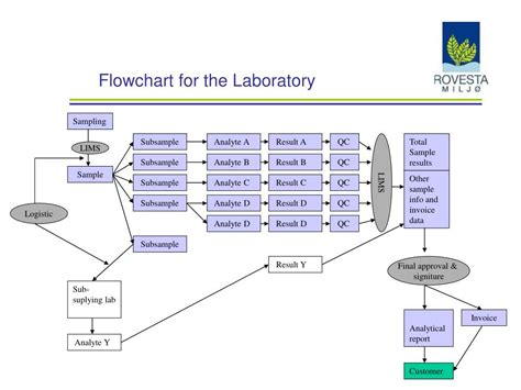 ppt flowchart ppt flowchart for the laboratory powerpoint presentation