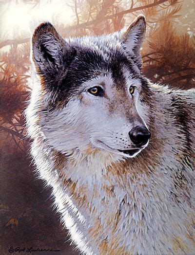 watercolor wolf tutorial wolf acrylic painting tutorial art tips pinterest