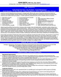 click here to download this sr project executive resume