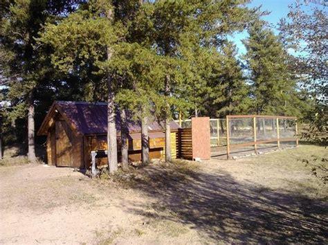 backyard chicken forum chicken coop project backyard chickens community