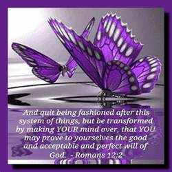 what does the color purple in the bible 267 best images about butterfly bible quotes on