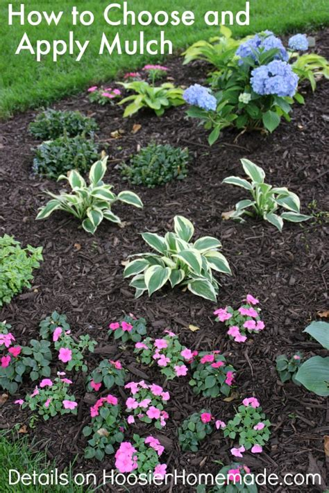 how to mulch flower beds how to choose and apply mulch to your flower beds