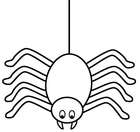 spider outline coloring page spider outline coloring home