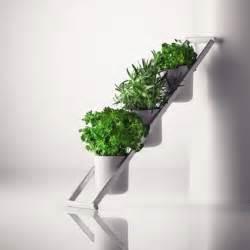 vasi per erbe aromatiche contenitori indoor per piante aromatiche