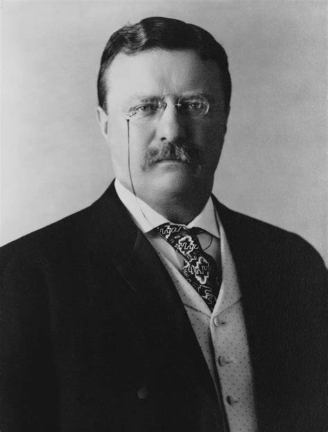 presidency of theodore roosevelt wikipedia the free file president theodore roosevelt 1904 jpg wikibooks
