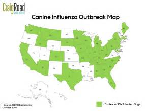 blank us map svg canine influenza