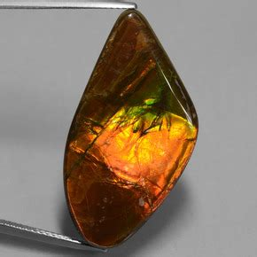 Ruby 21 7ct multicolor ammolite 21 7ct fancy from canada gemstone